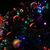 Christmas tree & the Sky tree