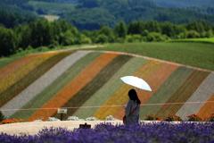 日傘をさす女性とストライプの丘