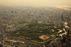 大阪城が見えてきました、もう到着です