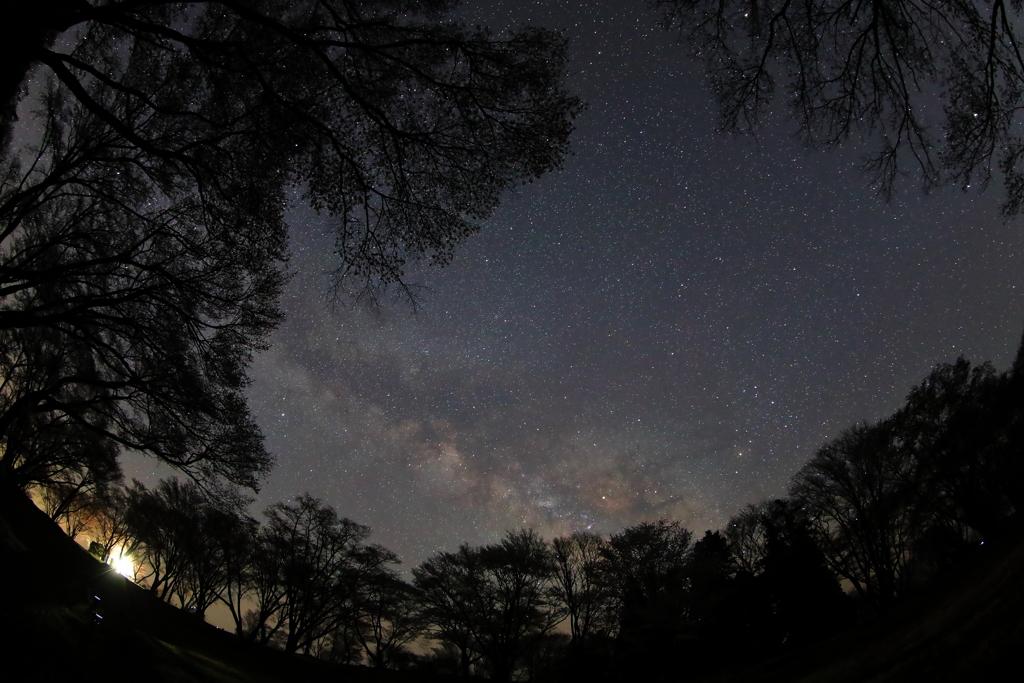 曽爾、屏風岩公苑にてこと座流星群を待つ