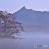 朝霧の駒ヶ岳