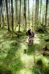 光の森で考えた