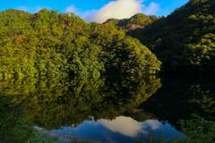 満水の湖面に水鏡