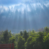 朝霧と光線の力作