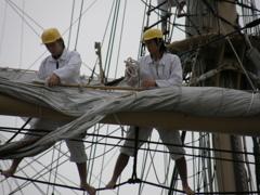 帆を張る訓練生たち