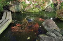 静寂の水面