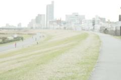 河川敷さんぽ