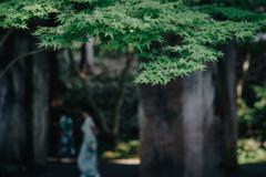 夏、京都。
