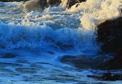 波物語 夏の波