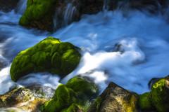 旅の思い出、草津温泉、
