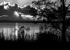 夜明けの湖畔、