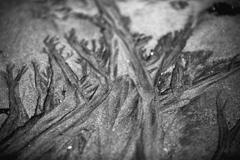 波の物語、砂浜