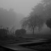 霧の朝、散歩道