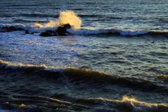 ご一緒に波と語りませんか、