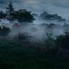朝霧の郷、