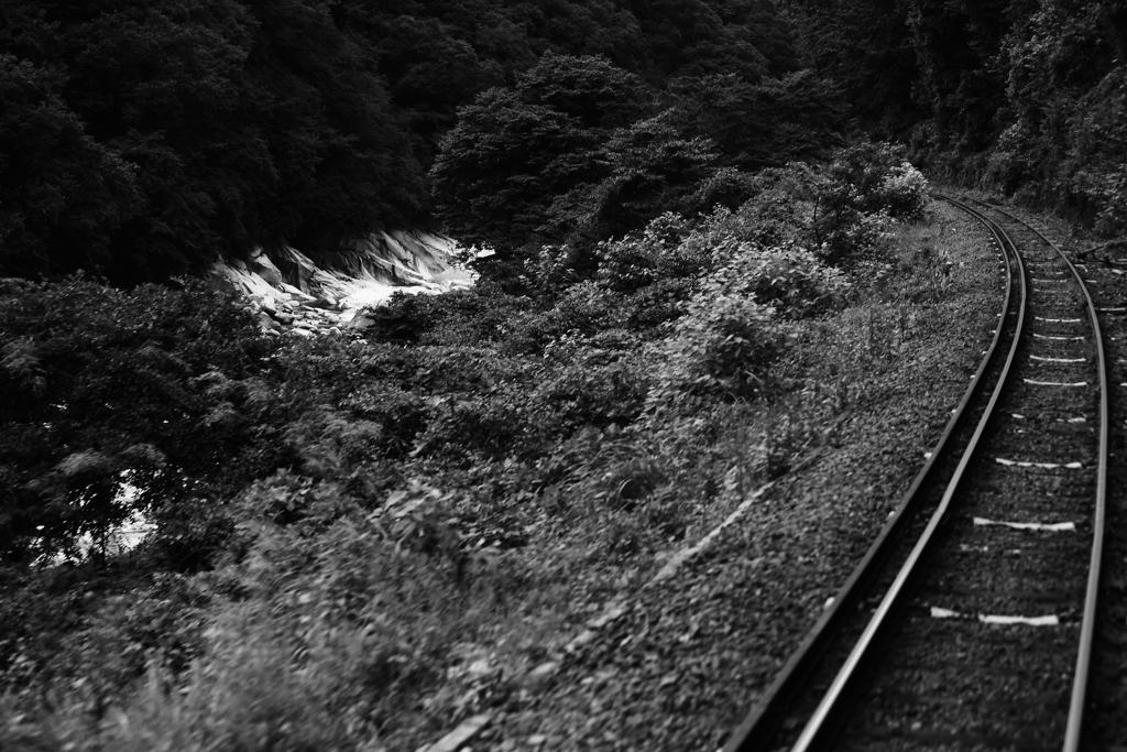 渡良瀬鉄道の旅Ⅱ
