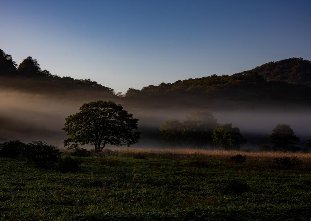 沼ッ原の朝