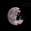 200703 月齢12.3 (層雲峡)