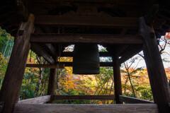 晩秋の圓光寺で Ⅷ