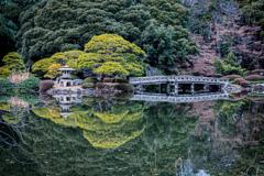 新宿御苑の日本庭園で。