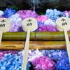 紫陽花のある手水鉢 Ⅱ