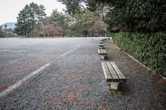 京都御苑の冬のある日