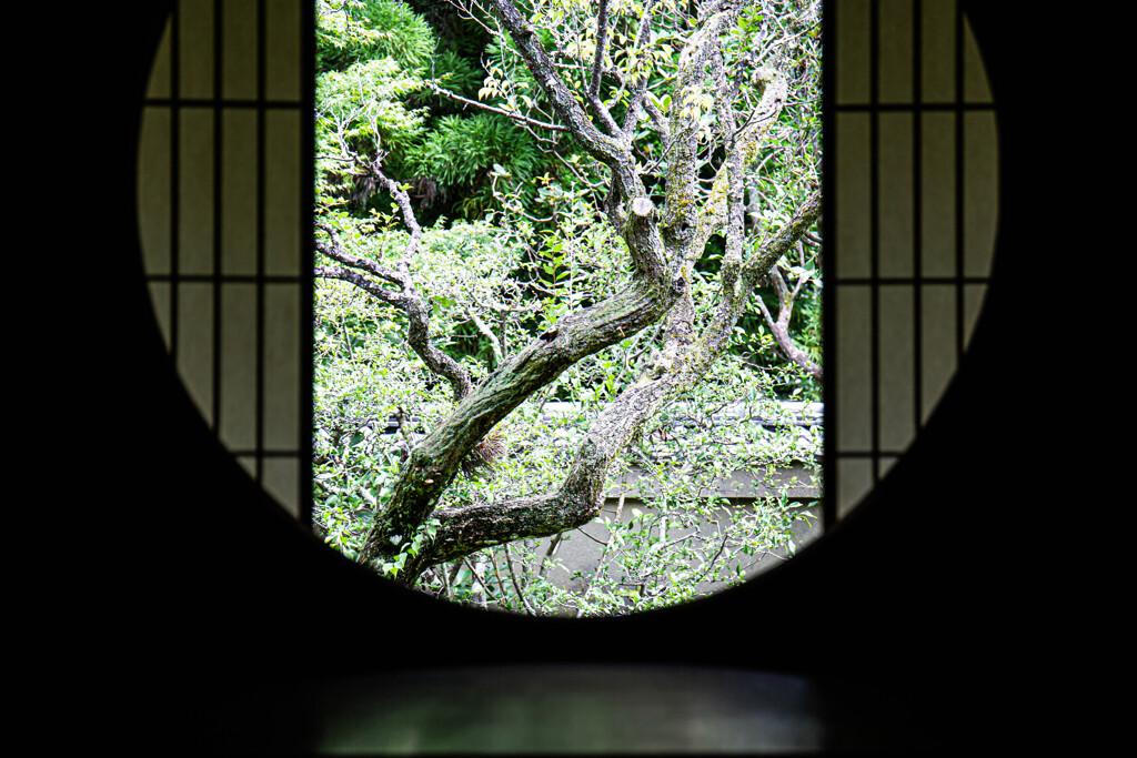 悟りの窓の景色