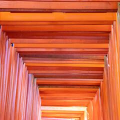 京の朱のトンネル Ⅰ