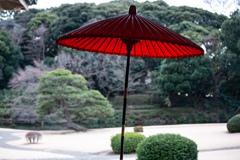 新宿御苑の休憩所で。