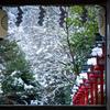 雪の貴船神社 Ⅰ