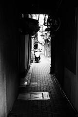 路地の街 Ⅴ