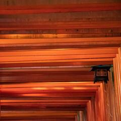 京の朱のトンネル Ⅱ
