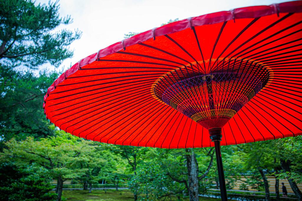 『野点傘』