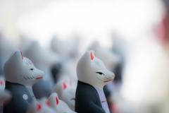 『白狐たちの集会②』