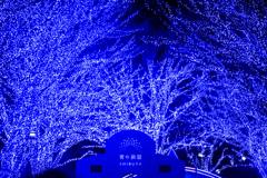 『青の洞窟』