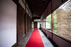 雲龍院の赤い廊下