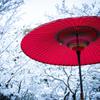『お休み処の雪景色』②