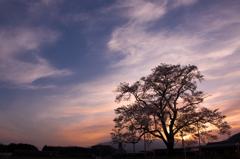4月の夕空の下で
