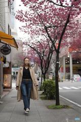 ぶらり日本大通り