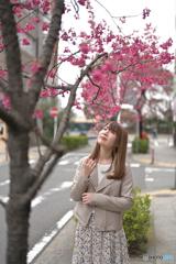 ぶらり日本大通り2