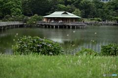 中島の御茶屋