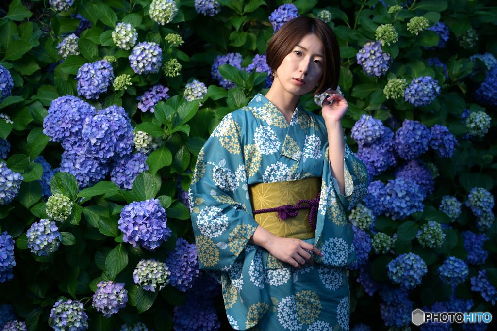 紫陽花とべっぴんさん4