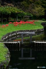 神田上水跡