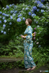 紫陽花とべっぴんさん2