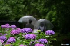 雨の日のデート