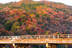 On the 渡月橋