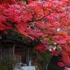 日本の・・・四季