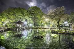 日中友好庭園(桜の季節の終焉に)
