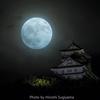 十五夜の岐阜城