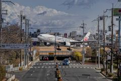 JAL777(TOKYO2020)